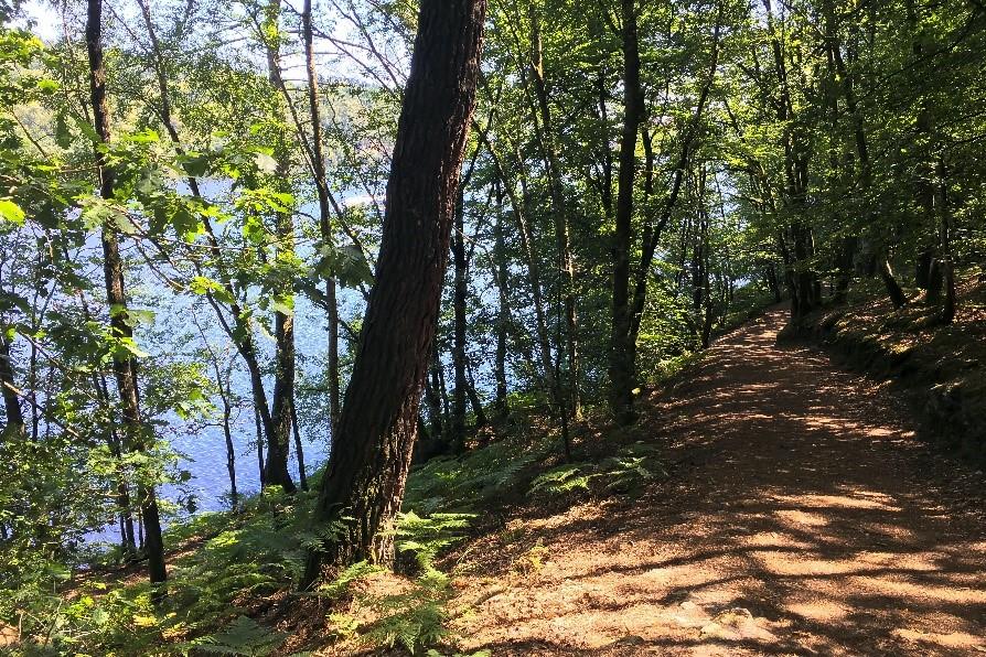 Admirez la superbe vue sur le lac lors de vos randonnées sur les sentiers autour de celui-ci !
